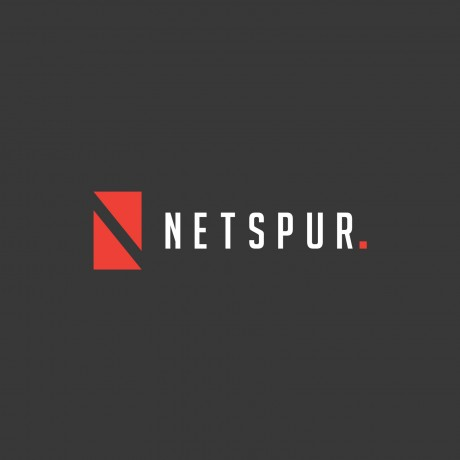 Netspur Logo